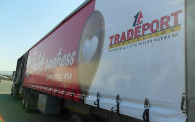 Why Does Your Business Need Tarps?